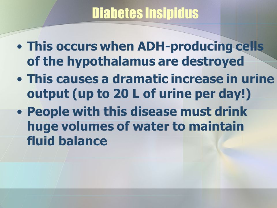 Diabetes Insipidus This occurs when ADH-producing cells of the hypothalamus are destroyed.