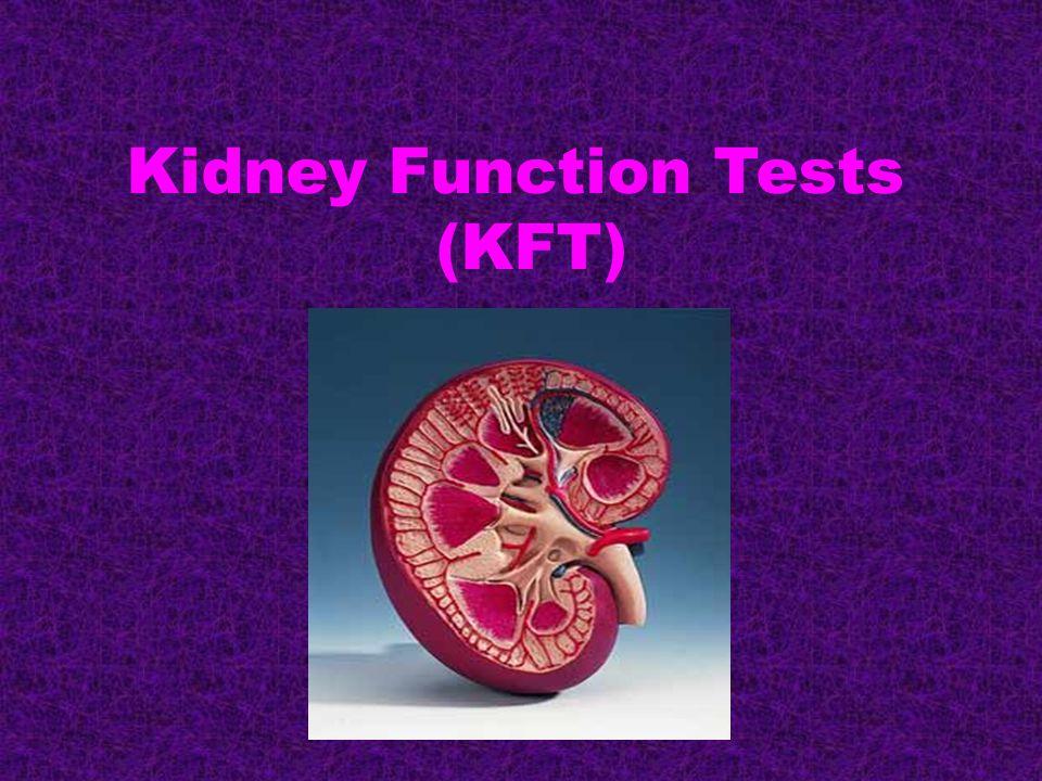 Kidney Function Tests (KFT)