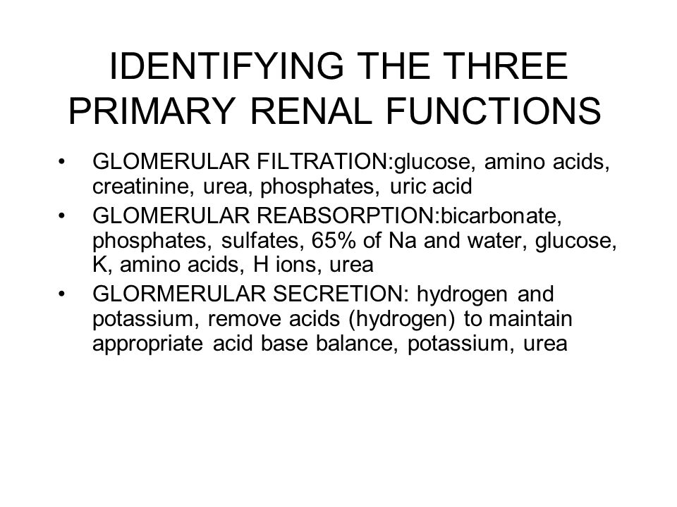 IDENTIFYING THE THREE PRIMARY RENAL FUNCTIONS