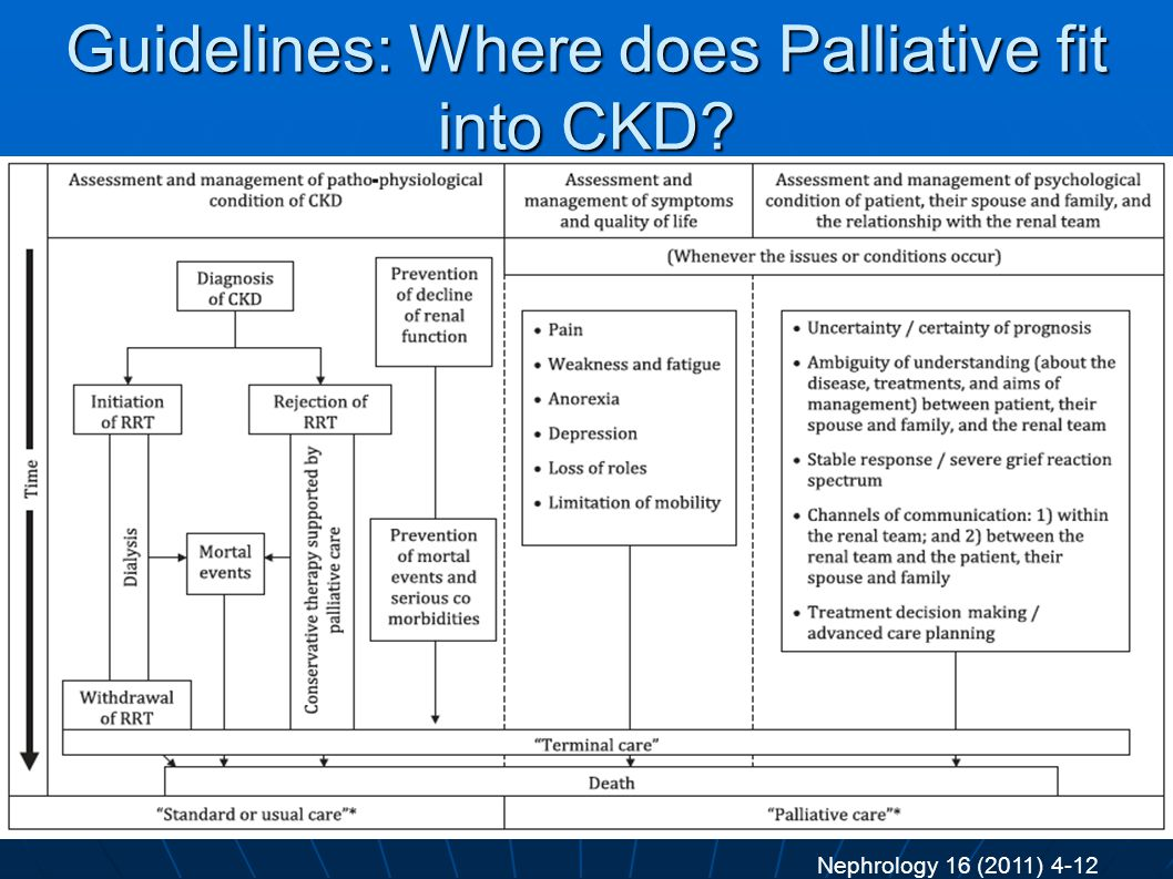 Guidelines: Where does Palliative fit into CKD