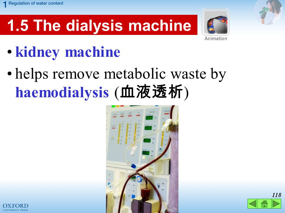 helps remove metabolic waste by haemodialysis (血液透析)
