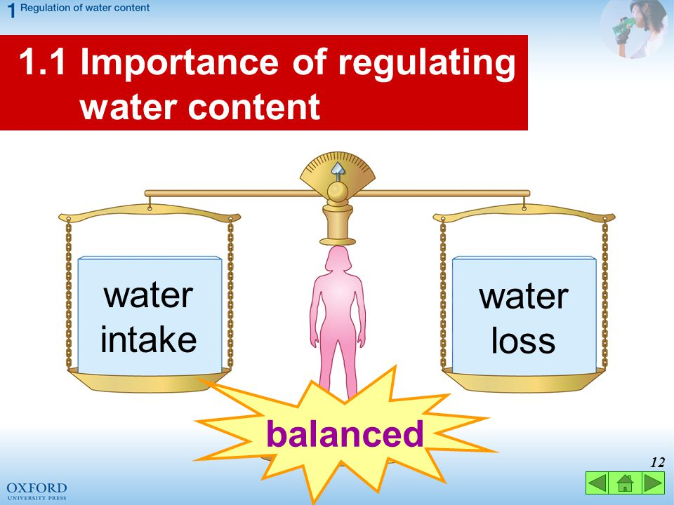 1.1 Importance of regulating water content