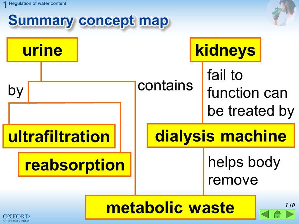 urine kidneys ultrafiltration dialysis machine reabsorption