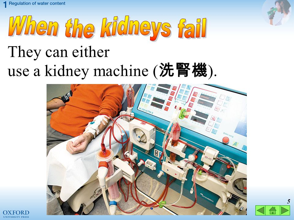 When the kidneys fail They can either use a kidney machine (洗腎機).