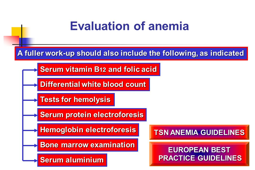 Evaluation of anemia A fuller work-up should also include the following, as indicated. Serum vitamin B12 and folic acid.