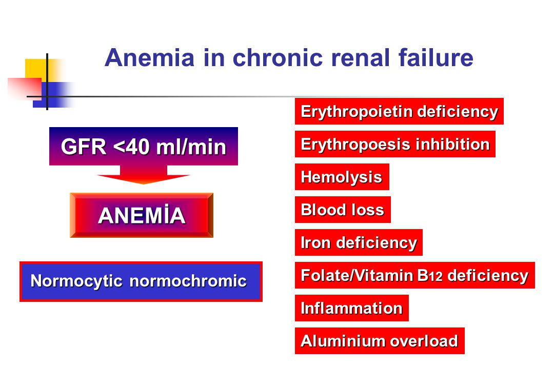 Anemia in chronic renal failure