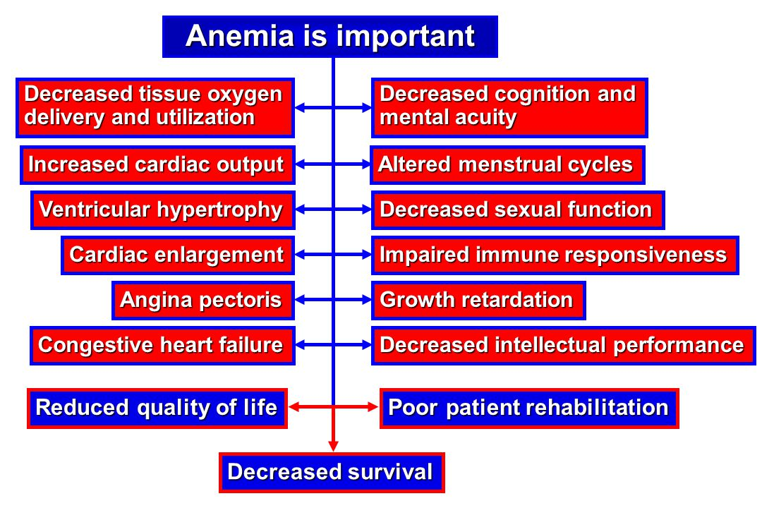 Anemia is important Reduced quality of life