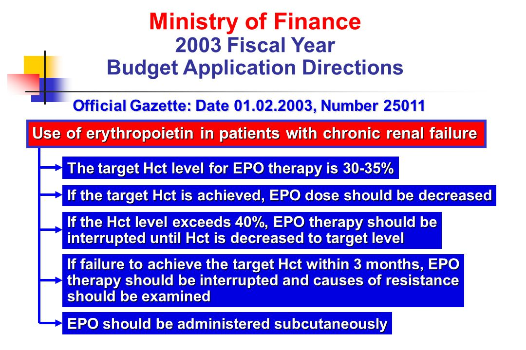 Ministry of Finance 2003 Fiscal Year Budget Application Directions