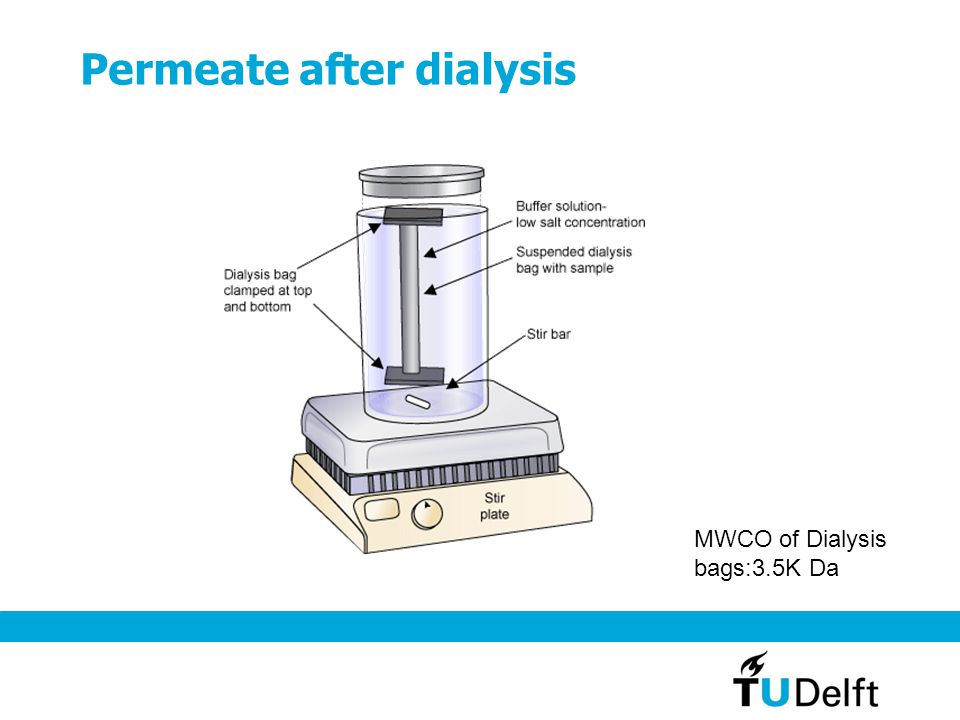 Permeate after dialysis