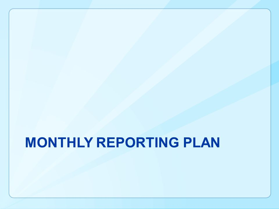 MONTHLY REPORTING PLAN