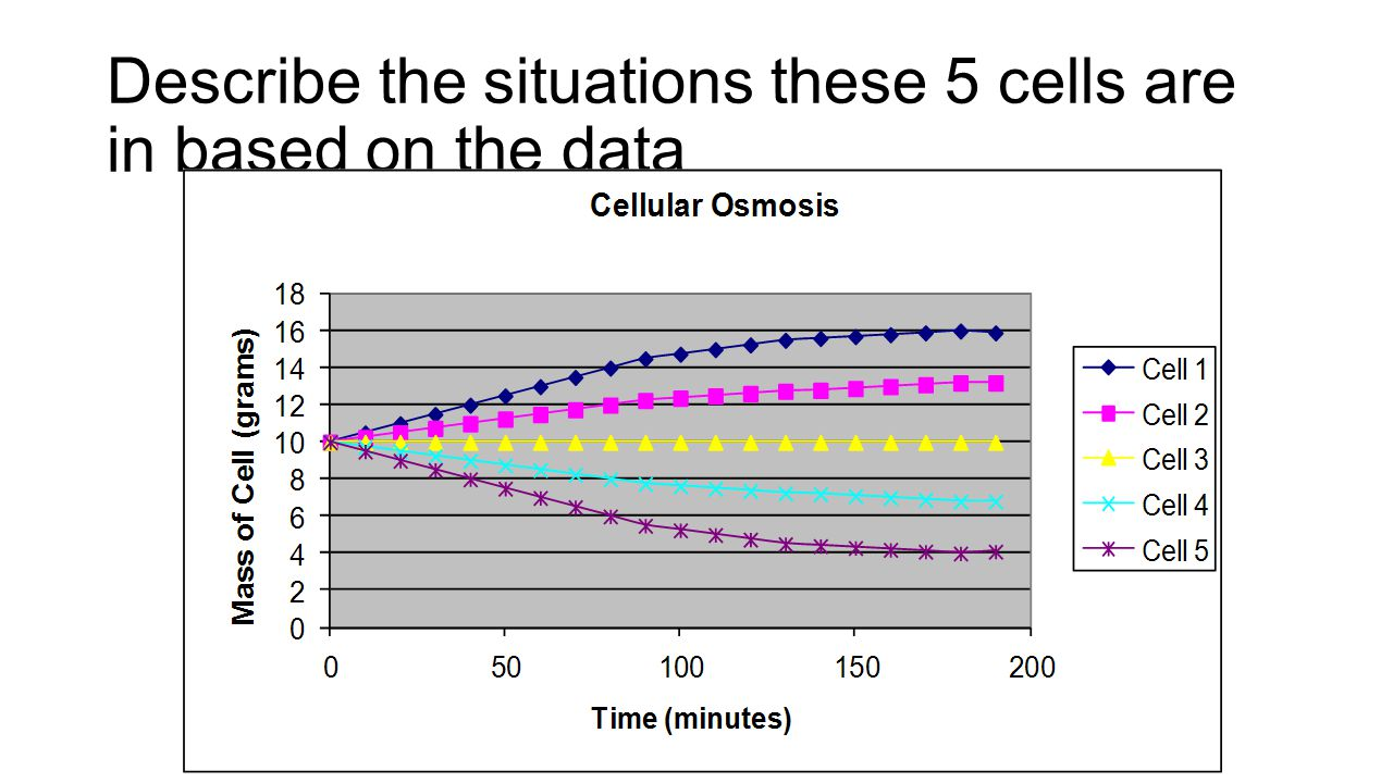 Describe the situations these 5 cells are in based on the data