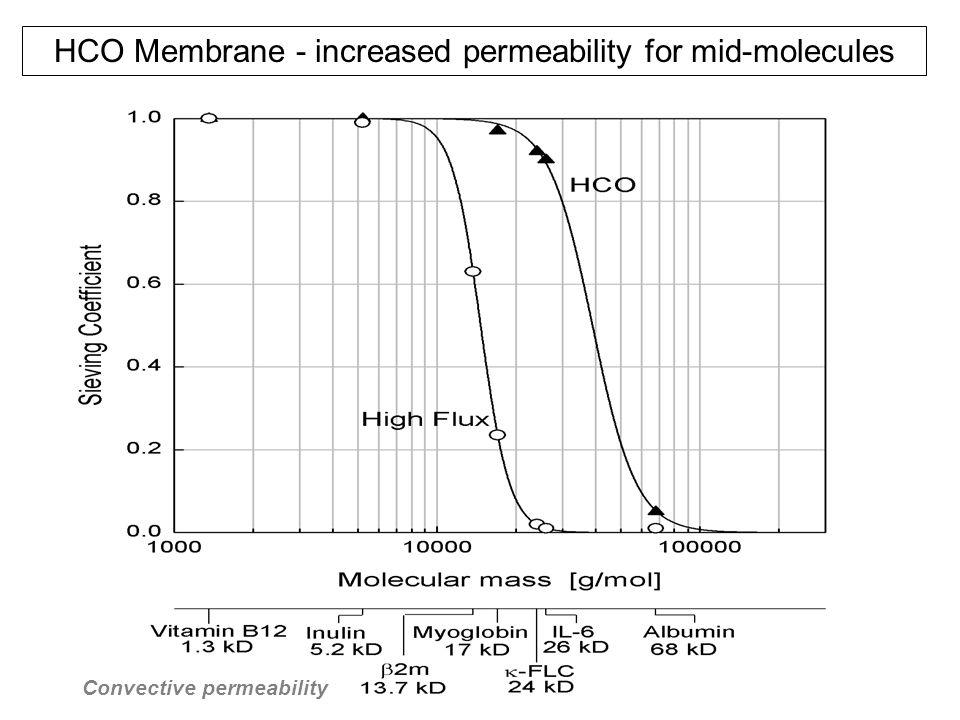 Convective permeability
