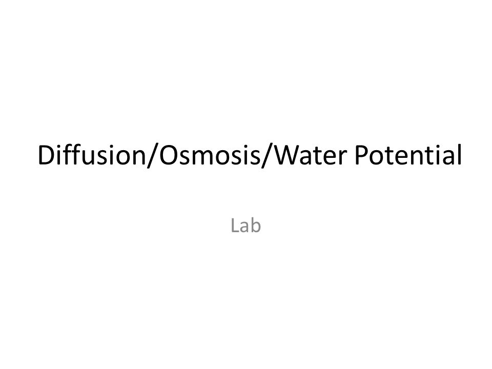 osmosis water potential lab If the medium has a lower concentration of water than the cell (a very concentrated solution) the cell will lose water by osmosis again,.