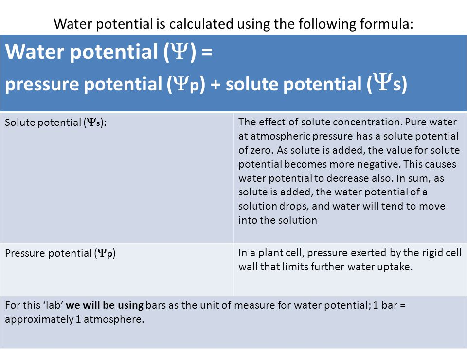 Water potential is calculated using the following formula: