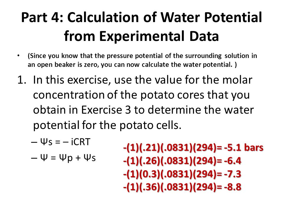 Part 4: Calculation of Water Potential from Experimental Data