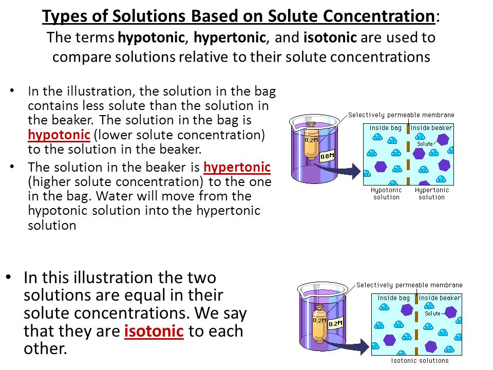Types of Solutions Based on Solute Concentration: The terms hypotonic, hypertonic, and isotonic are used to compare solutions relative to their solute concentrations