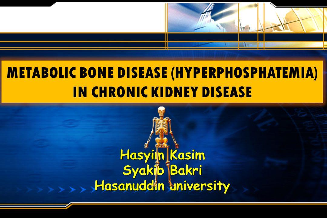 Hasyim Kasim Syakib Bakri Hasanuddin university
