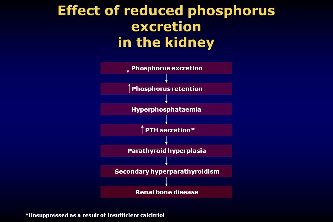 Effect of reduced phosphorus excretion in the kidney