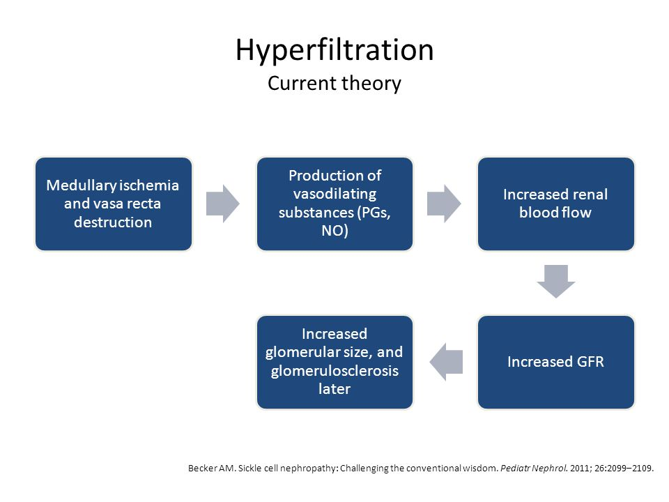 Hyperfiltration Current theory