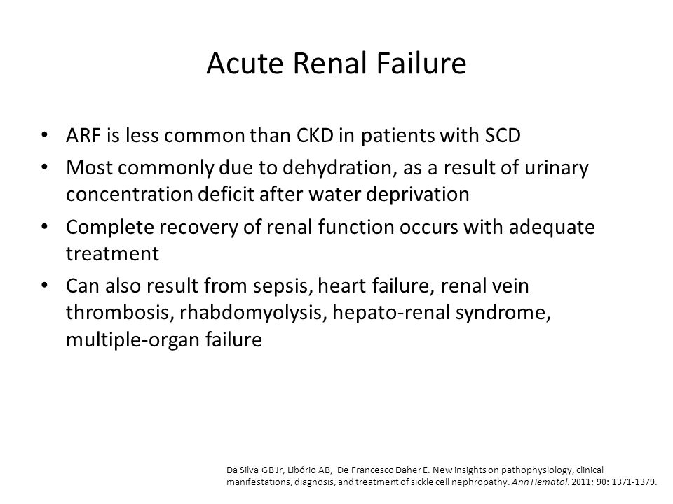 Acute Renal Failure ARF is less common than CKD in patients with SCD