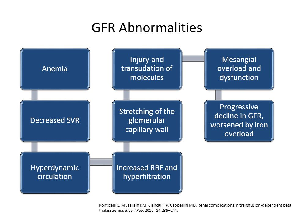 GFR Abnormalities Anemia Decreased SVR Hyperdynamic circulation