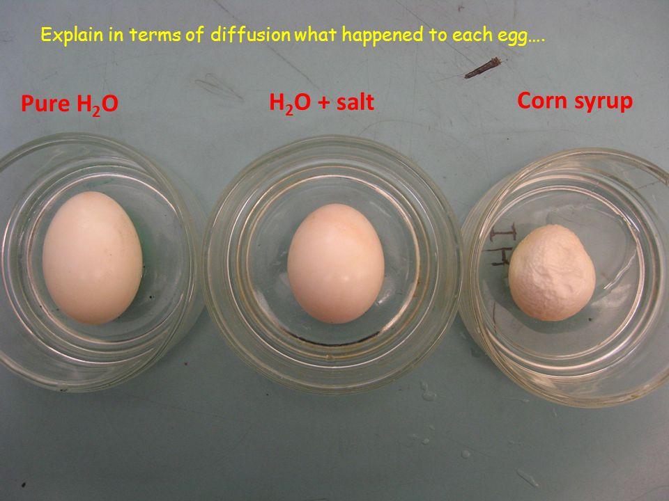 Pure H2O H2O + salt Corn syrup