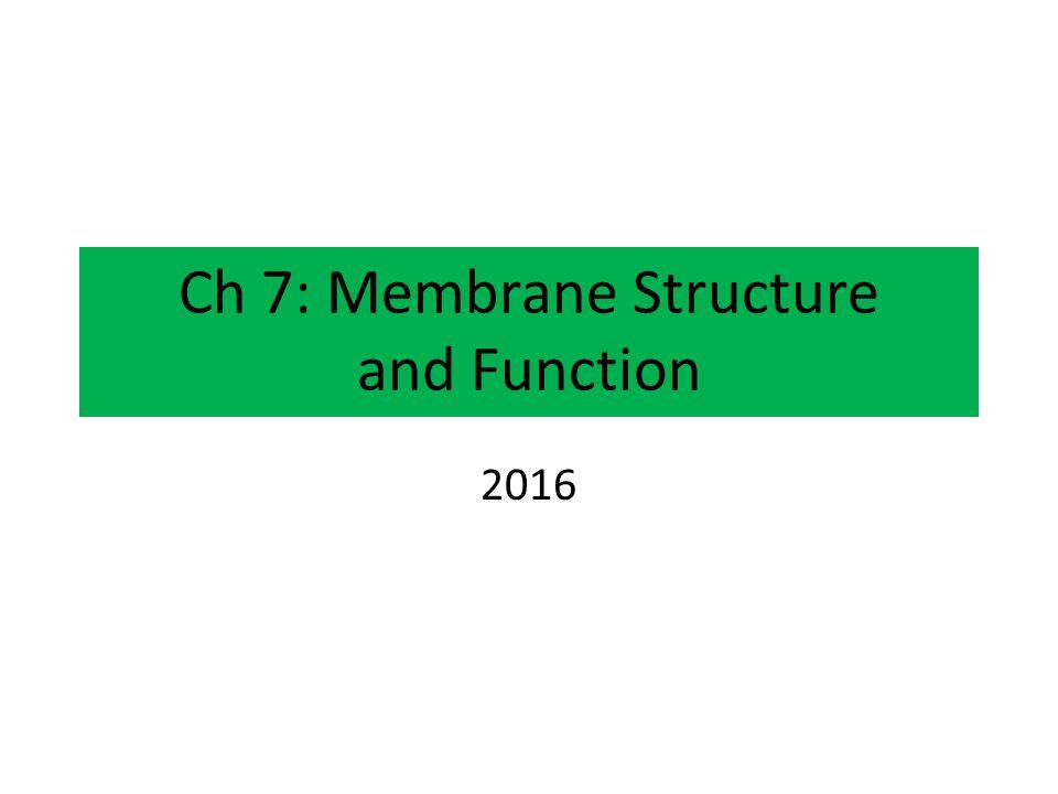 Ch 7: Membrane Structure