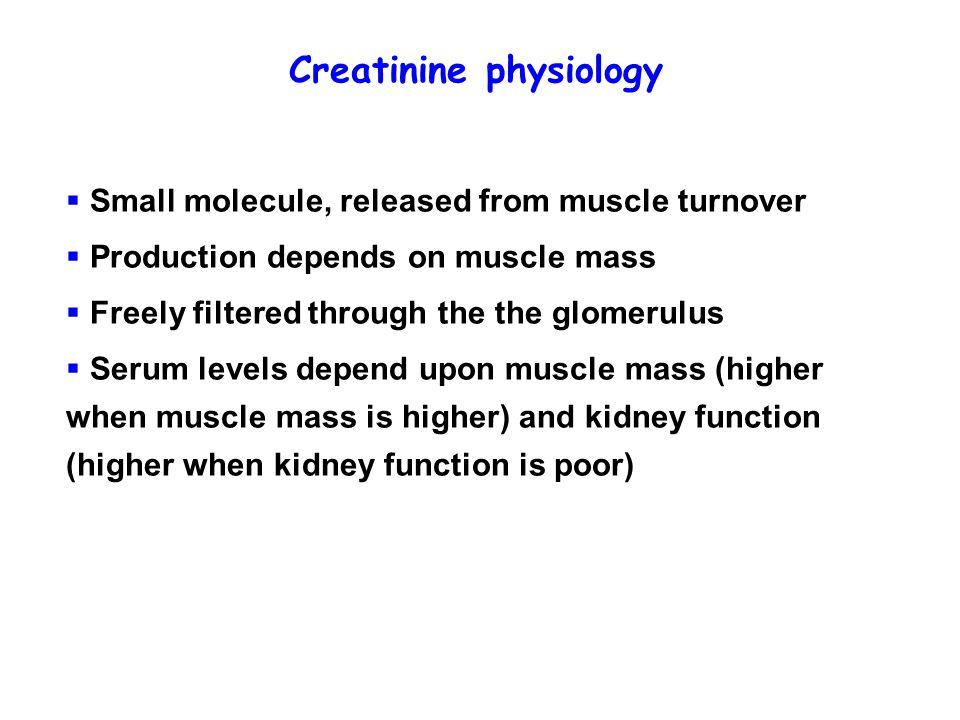Creatinine physiology