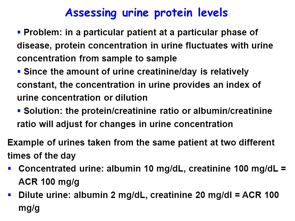 Assessing urine protein levels