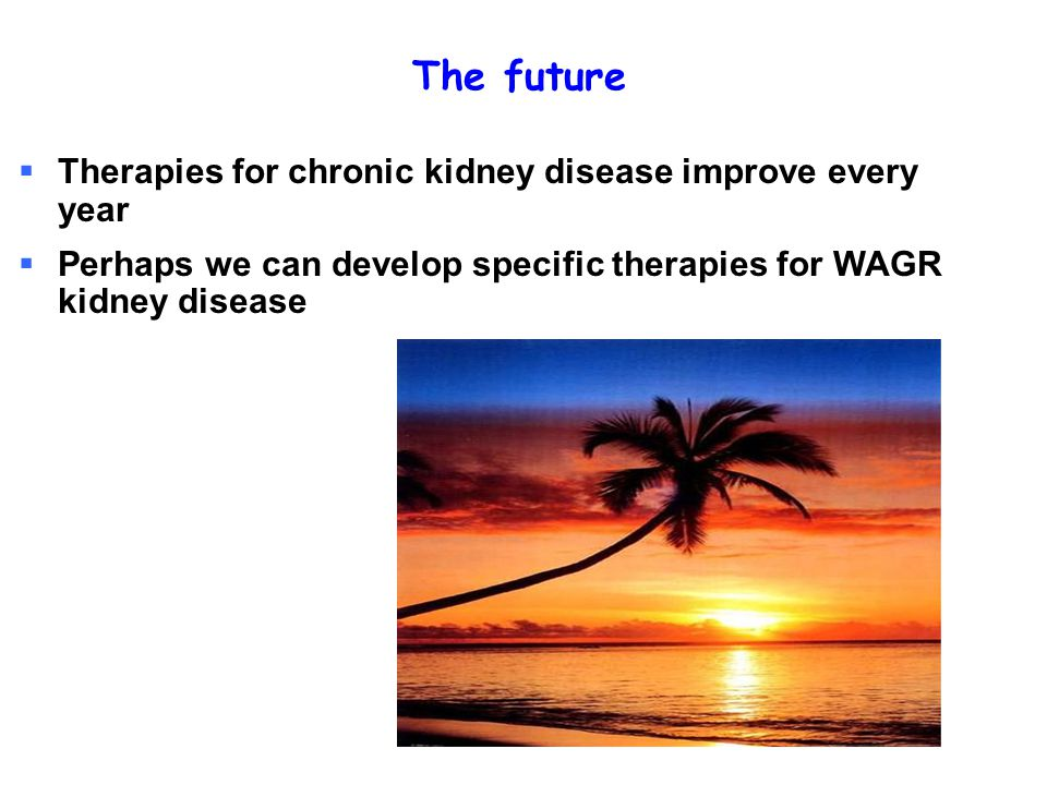 The future Therapies for chronic kidney disease improve every year