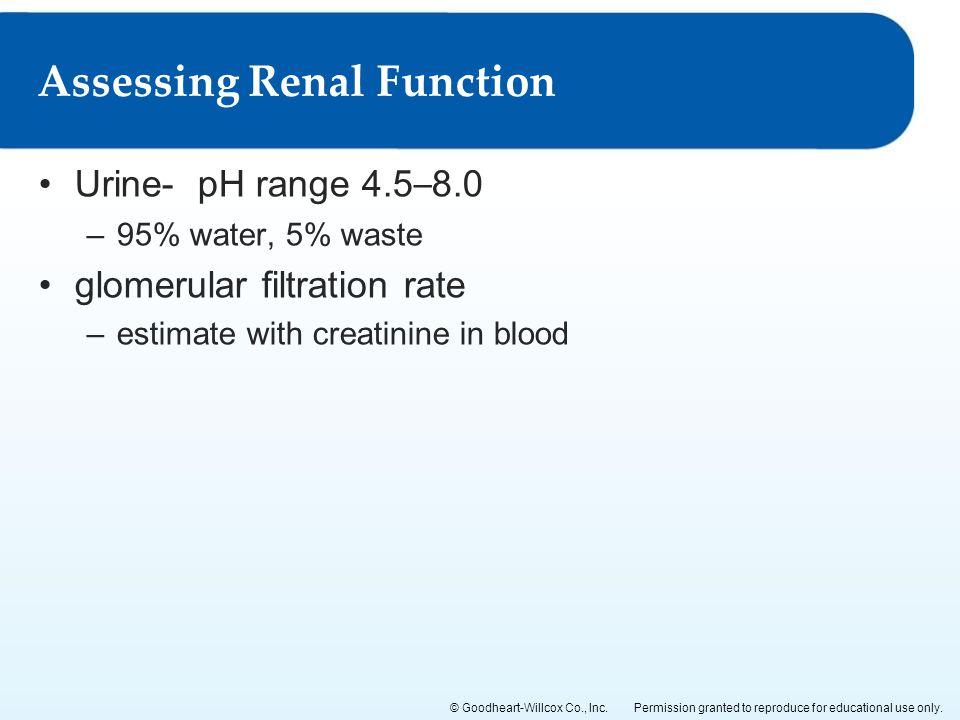Assessing Renal Function