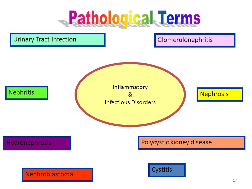 Inflammatory & Infectious Disorders