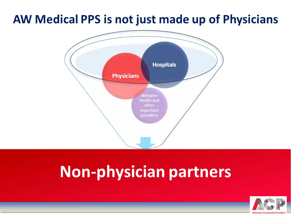 Non-physician partners