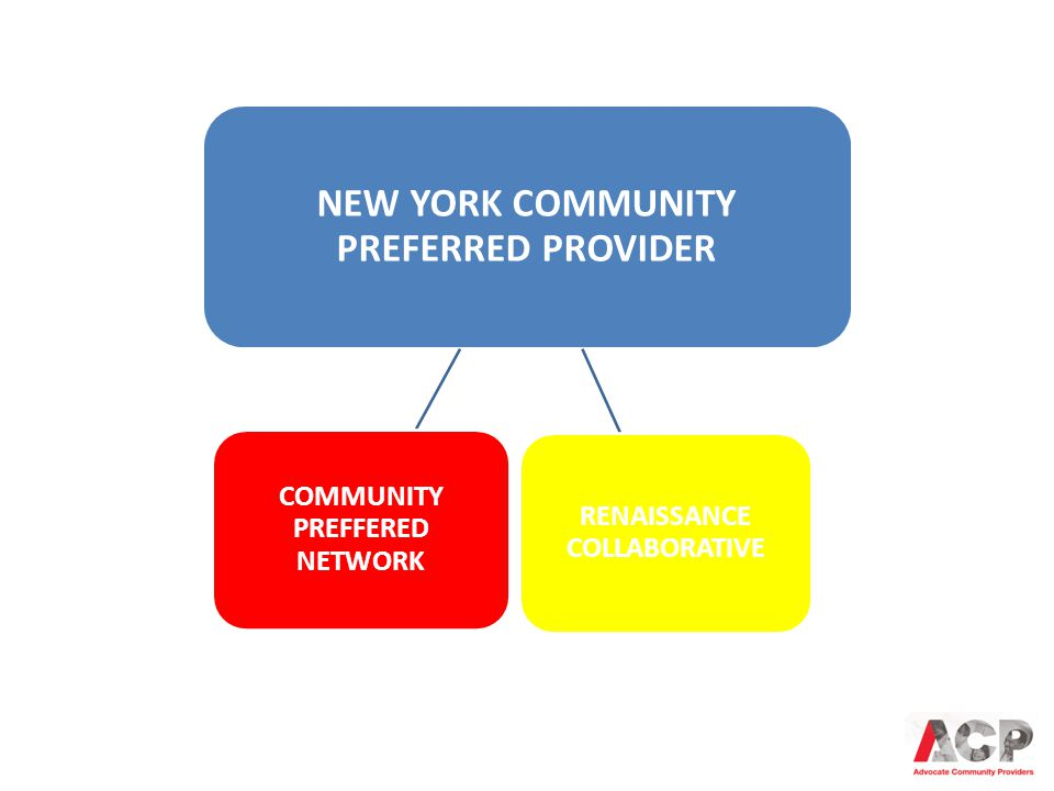 NEW YORK COMMUNITY PREFERRED PROVIDER