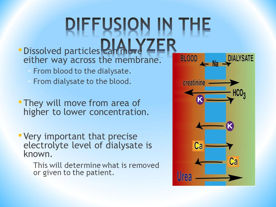 DIFFUSION IN THE DIALYZER