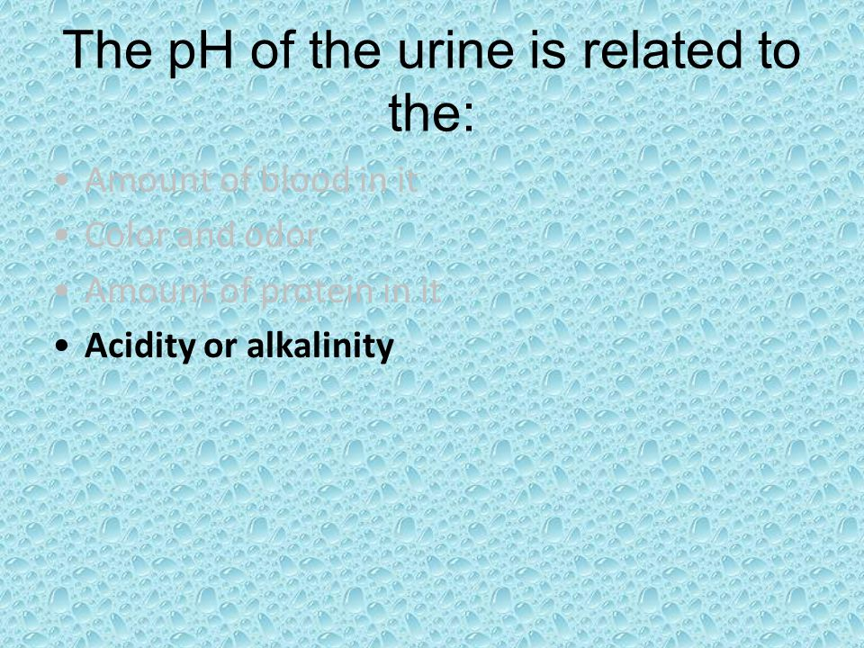 The pH of the urine is related to the: