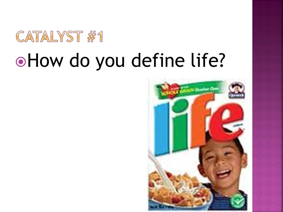 Catalyst #1 How do you define life