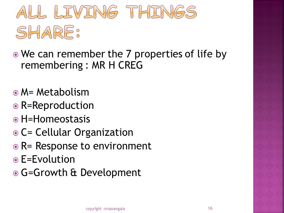 All living things share: