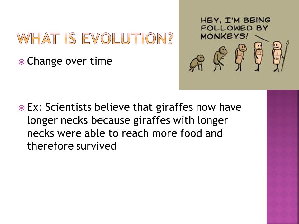What is evolution Change over time