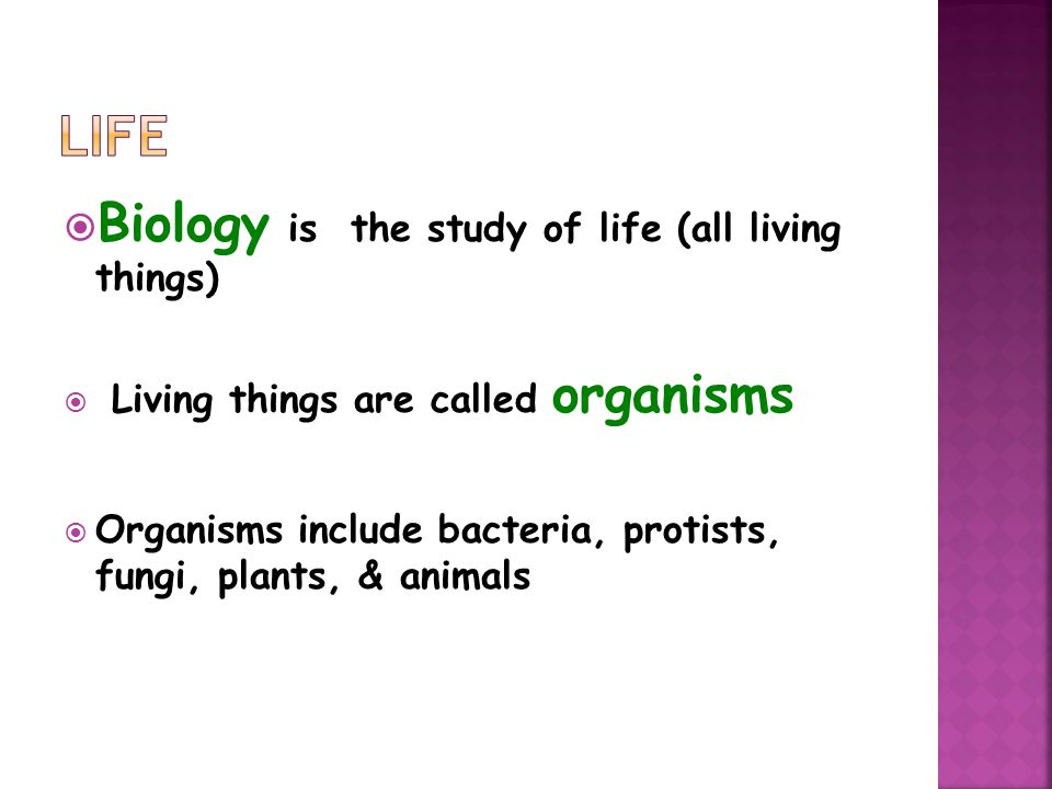 Life Biology is the study of life (all living things)