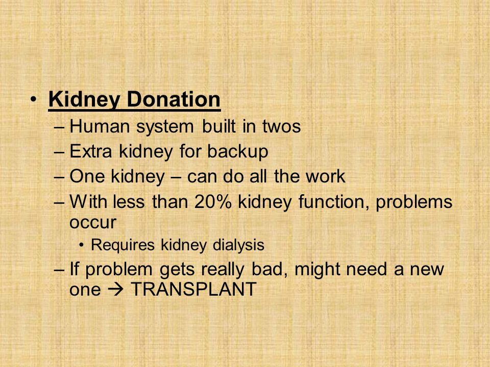 Kidney Donation Human system built in twos Extra kidney for backup