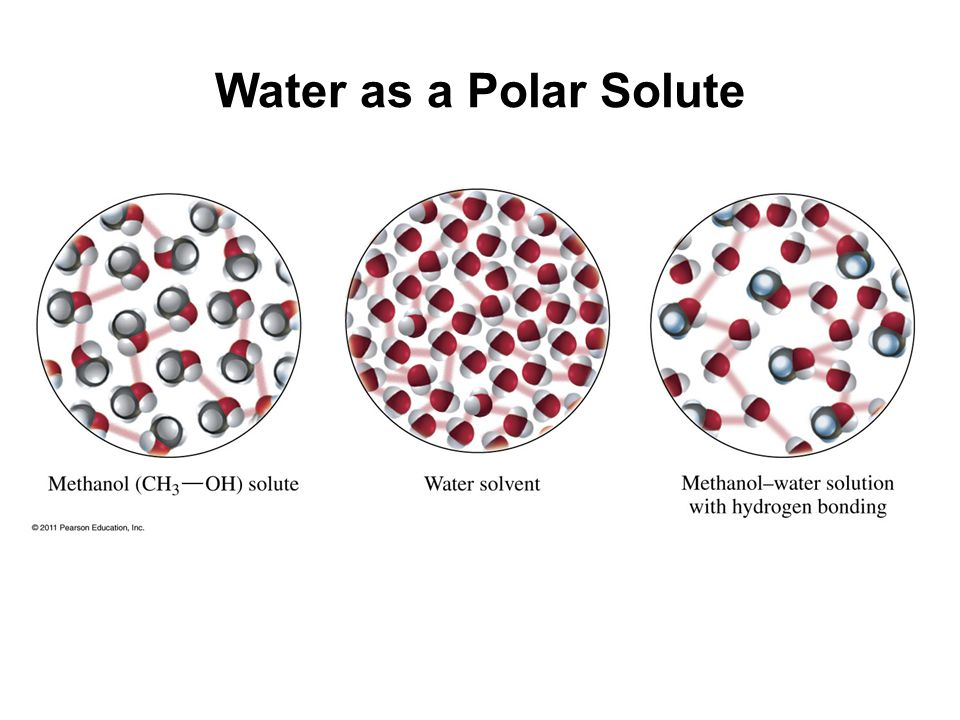 Water as a Polar Solute