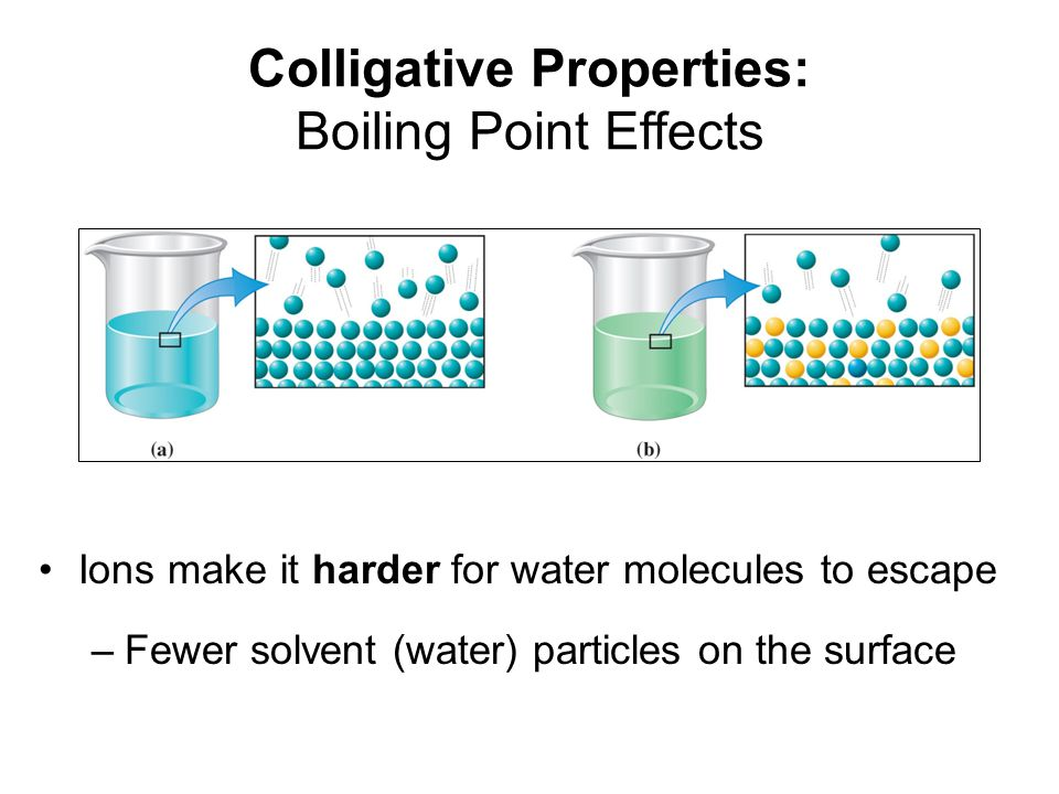 Colligative Properties: Boiling Point Effects