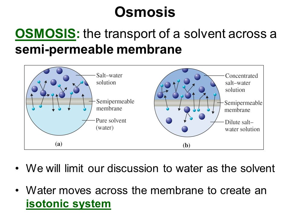 Osmosis OSMOSIS: the transport of a solvent across a semi-permeable membrane. We will limit our discussion to water as the solvent.
