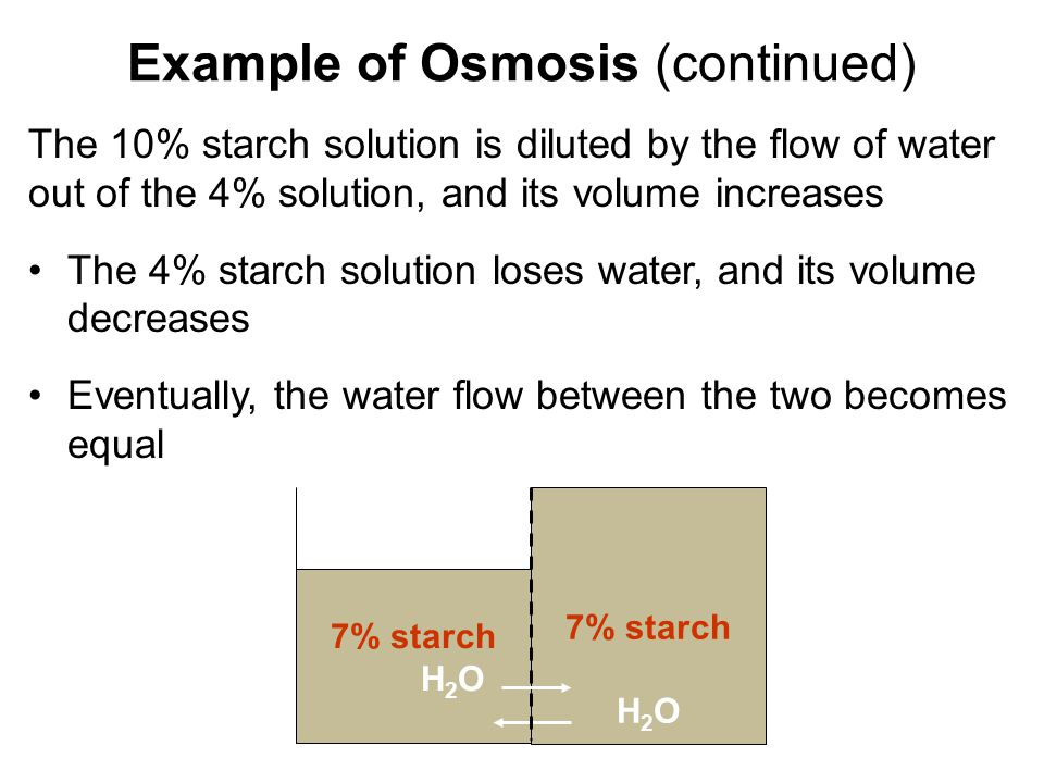 Example of Osmosis (continued)