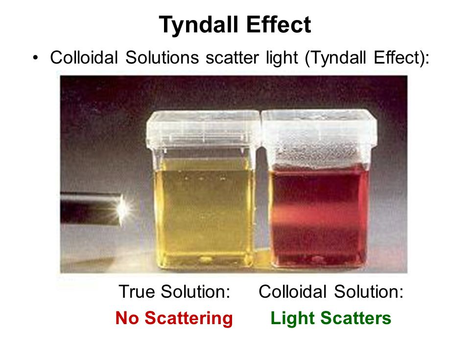 Tyndall Effect Colloidal Solutions scatter light (Tyndall Effect):