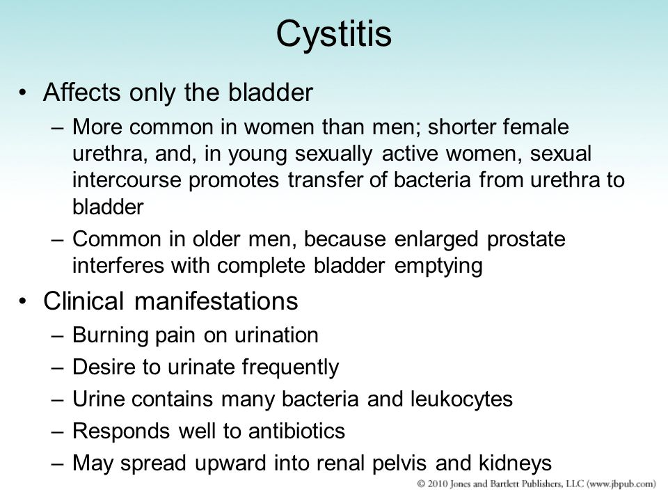 Cystitis Affects only the bladder Clinical manifestations