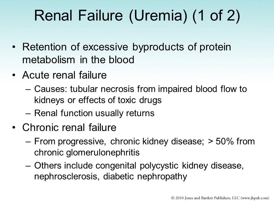 Renal Failure (Uremia) (1 of 2)