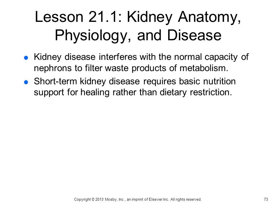Lesson 21.1: Kidney Anatomy, Physiology, and Disease