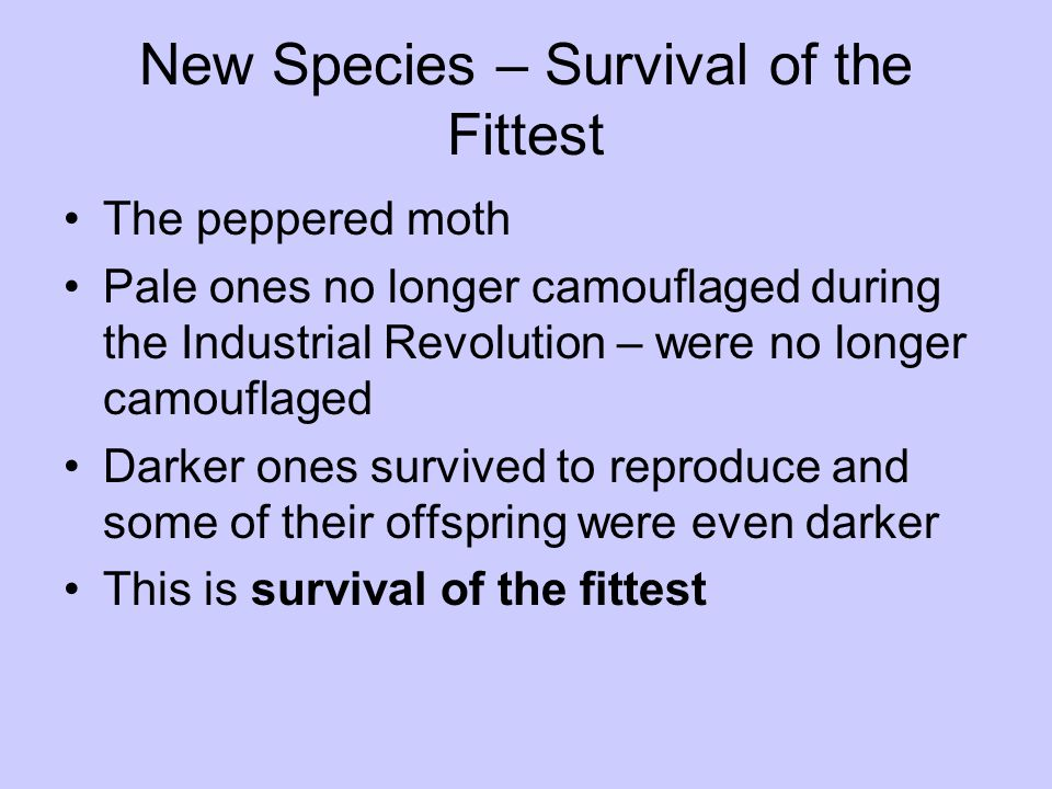 New Species – Survival of the Fittest